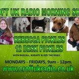 REBECCA PICKLES & 12 DESK PICKLES 070518