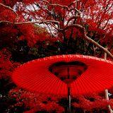 "Tokyo Deep House - Live Mix on Block.fm ""Absolute Mind Oscillator"" 2014-11-20"