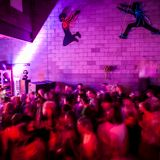 Feathericci -Communikey New Years 2012/13