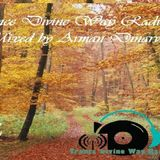 Trance Divine Way #002 - Mixed by Arman Dinarvand (19.9.2014)