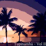Tupinambá - Vol 2