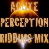 Acute Perception Riddims Mix