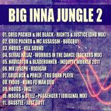 BIG INNA JUNGLE 2