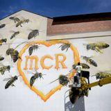 we still love MCR x