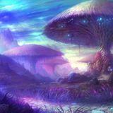 My Purple Mushroom