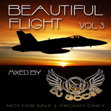 Beautiful Flight Vol. 3