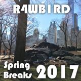 Spring Breaks 2017