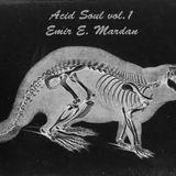 Acid Soul vol.1 by Emir E. Mardan