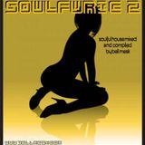 Soulfuric 2