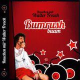 Bumrush Buam - Rauchen mit Walter Frosch (2010)