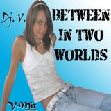 Dj. V. - V-Mix 2008 (Between In Two Worlds)