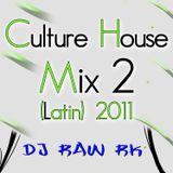 DJ RAW RK_Culture House Mix 2 (Latin) 2011