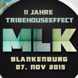 Miss_MissGeSchick @ 11 Jahre Treibhouseeffect, MLK Blankenburg 07-11-2015