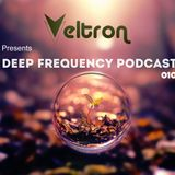 Deep Frequency Podcast #010 mixed by Veltron