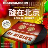 DJ BIGICE - 酸在北京 (Acid in Beijing) (DJ MIXTAPE)