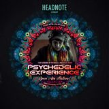 Headnote @ Psychedelic Experience 2017