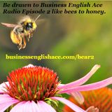 Business English Ace Radio - Episode 002