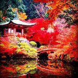 KYOTO DEEP HOUSE