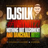 Silkshutdown Presents #WhyNot2?