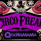 MIX CIRCO FREAK! ( Halloween 2014 By Dj Sadosky )
