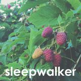 Thorn Eddy - Sleepwalker July 3, 2014