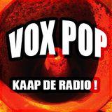 Vox Pop: Kokopelli Festival