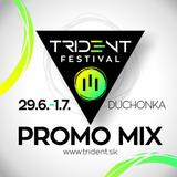 Disgustin Justin - Trident Festival 2017 Promo Mix
