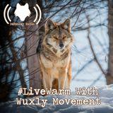 602: #LiveWarm With Wuxly Movement