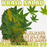 BRAIN SALAD MIX Roots & Bass Radio (KROV FM 91.1) 7.11.14