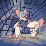 Vous reprendrez bien un peu d'purée #23 - Les rats passent, les homos partent et les haies scellent
