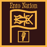 "Ento Nation Ep.3: ""Super Cricket / PTSD / Veterans Day Special"""