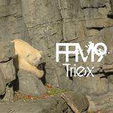 Freeformaniacs Round 9 - Triex (23/05/2013)
