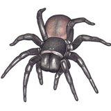 December Spider Bites A mix byPrecipice K (Winter 2015)