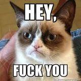 Grumpy Cat Serende