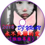 2018 DJ YUAN 永不失聯的愛《雅雅專屬》