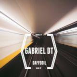 Gabriel DT - Daffodil mix