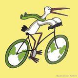 Les défricheurs - 05.03.2017 - Strasbourg, paradis du vélo ?