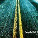 PurpleCat Digital Sessions (July 02 2012) on Pure.FM