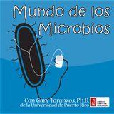 MdlM113: Microorganismos Halofilos Extremos y los virus que las infectan con Josefa Anton