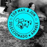Amable - Top Mayo & Junio '13