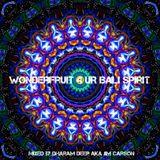 Wonderfruit 4 UR Bali Spirit