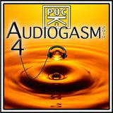 PucK - Audiogasm 4
