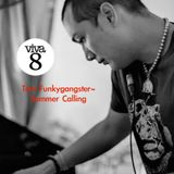 Viva Selection vol.3-Summer Calling (By Tom Funkygangster)