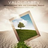 Valdi Sabev on Chilling...Earth