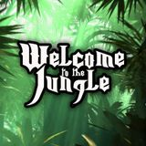 welcome to the jungle (jungle cakes records) set 2013