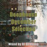 Deephouse December Selection