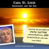 Cara St. Louis - Sustenance and the Sun