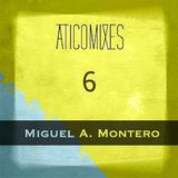 V.6 Miguel A. Montero