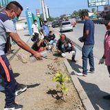 Deflorestasaun no Reflorestasaun_Programa Lian Meiu Ambiente episódiu 7