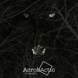 AcrobActic  #10